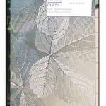 sycamore leaves pattern glass for cabinets